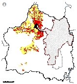 Mapa 20. Conflicto de uso del suelo en la reserva forestal protectora nacional de Cali